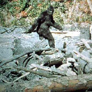 "Still of ""Patty"" from the 1967 Patterson-Gimlin film"