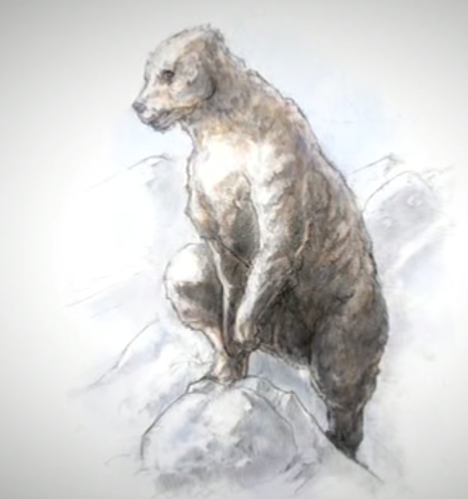 Rendition of unknown bear that may represent the Yeti