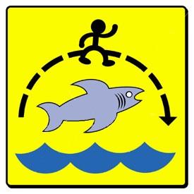 jump_the_shark