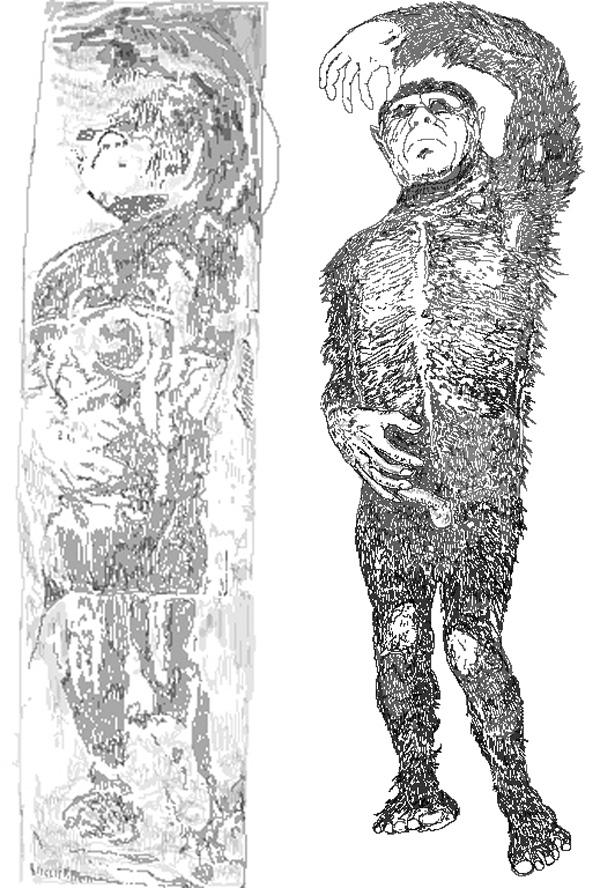 The Minnesota Iceman. Drawings by Darren Naish. Public domain.
